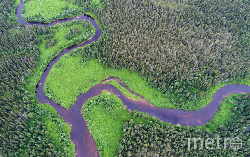 Слияние рек Юлы и Юраса в центральной части будущего заказника. Фото предоставлено WWF