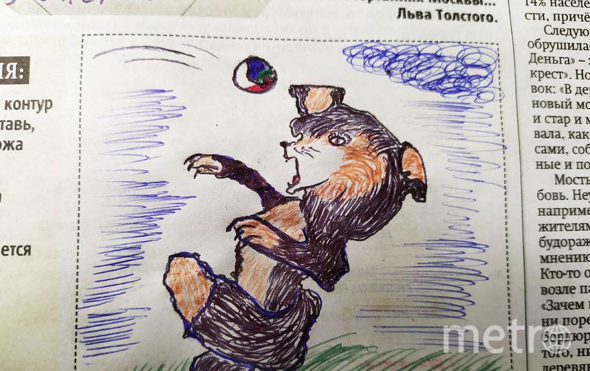 Собака ловит мяч. Фото Юрий Шарыгин