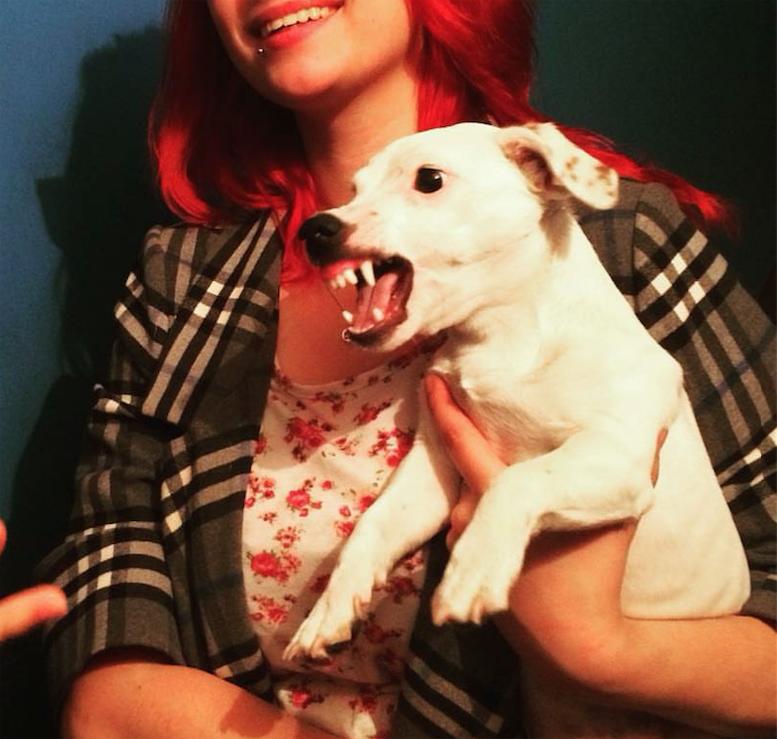 """Ну а чем этот малыш не """"собака Баскервилей""""? Фото Мария, """"Metro"""""""