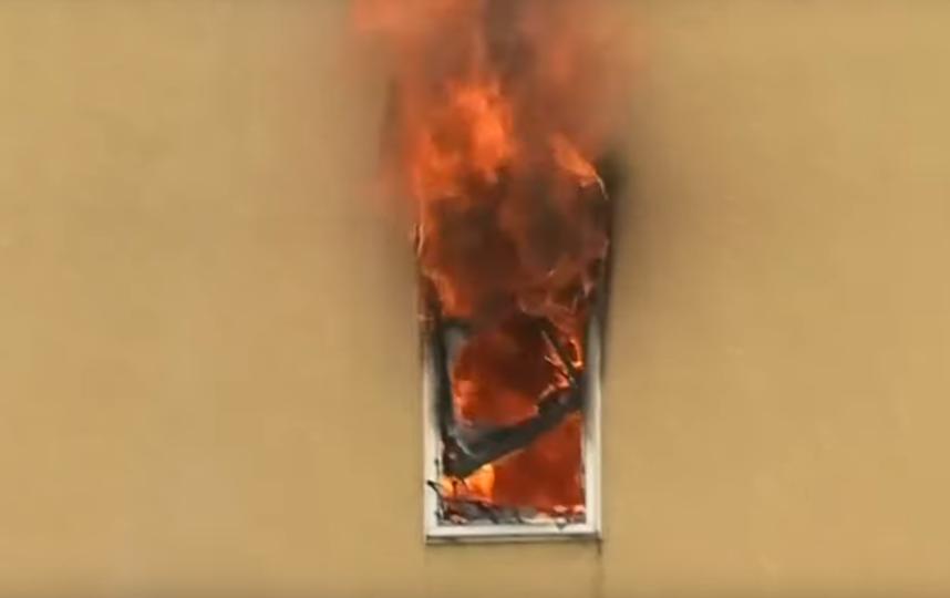 Пожар в студии аниме в Японии: погибли 12 человек. Фото Скриншот Youtube