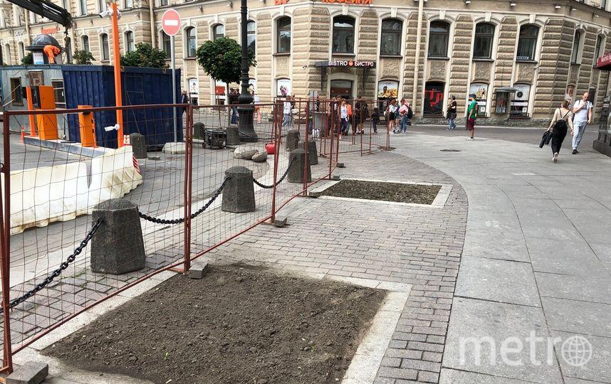 Пустые места для посадок деревьев на площади Восстания. Фото mytndvor, vk.com