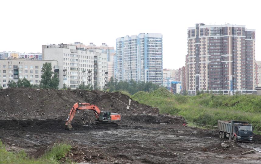 Полюстрово. Фото gov.spb.ru