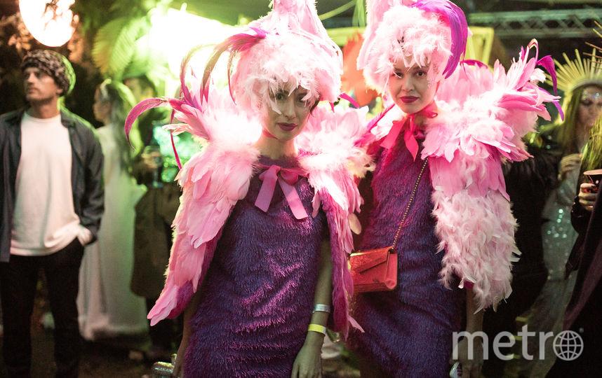В Подмосковье прошёл костюмированный фестиваль Midsummer Night's Dream. Фото Предоставлено организаторами