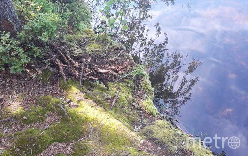 """Фото с места ЧП на озере Фигурное. Фото https://vk.com/lenobl.sledcom?w=wall-132217757_2501, """"Metro"""""""