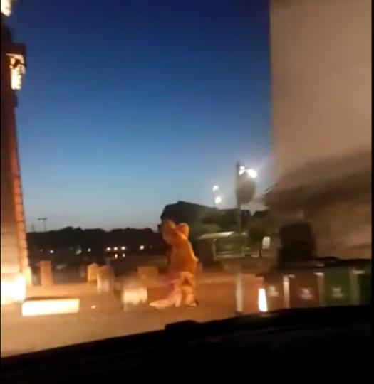 """Британские полицейские устроили погоню за """"динозавром"""". Фото Скриншот https://twitter.com/CharlesCrossLPP/"""