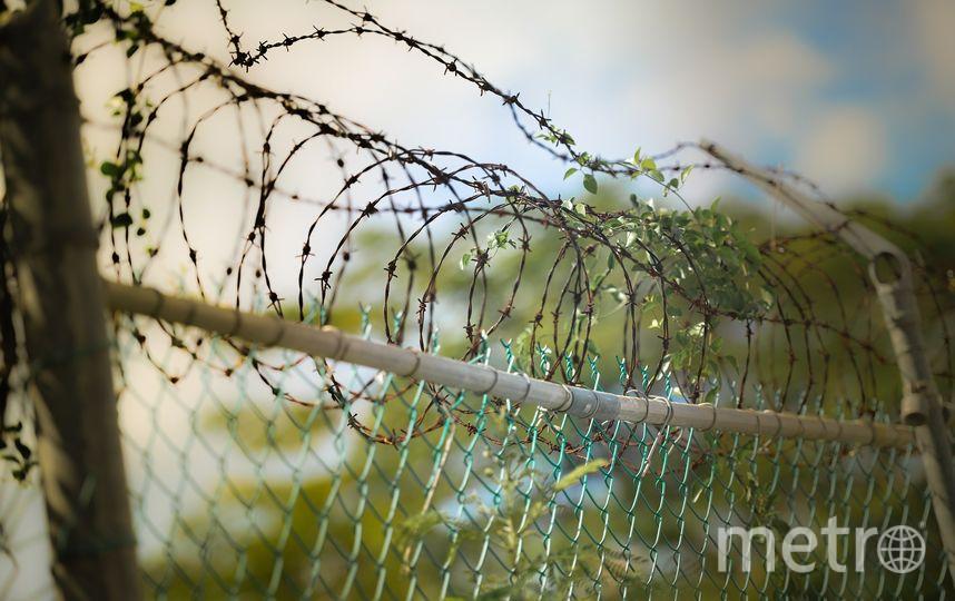 Ли Янься приговорили к 20 годам тюрьмы. Архивное фото. Фото pixabay.com