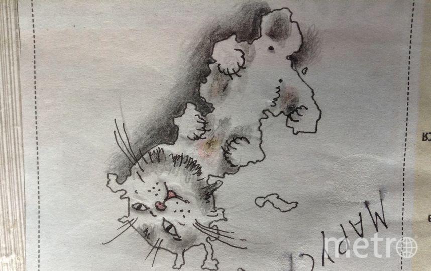 Очертания Москвы напомнили Олегу Александровичу Месхи, как семейная кошка Маруся любит поваляться и поиграть. Фото Олег Александрович Месхи