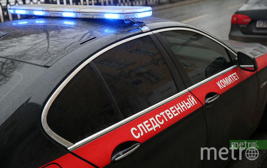 В Москве обнаружили чемодан, в который был спрятан труп обнажённой девушки. Фото Василий Кузьмичёнок