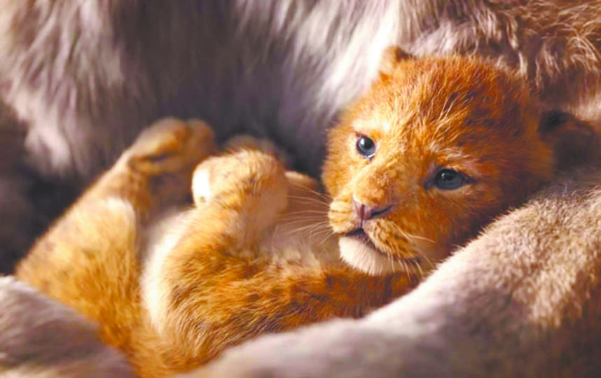 Персонаж фильма Симба в детстве. Кадр из фильма. Фото Walt Disney Studios Sony Pictures Releasing