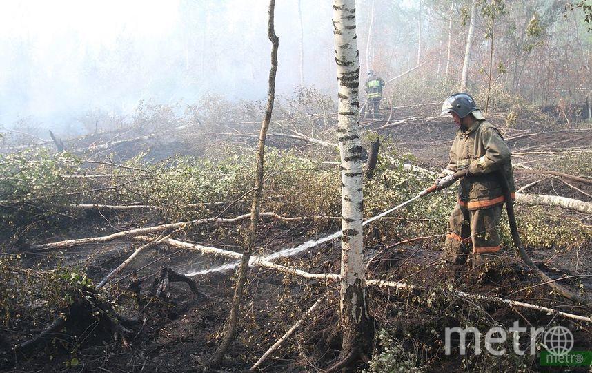Пожарные не допускают подход огня к населённым пунктам. Фото Василий Кузьмичёнок