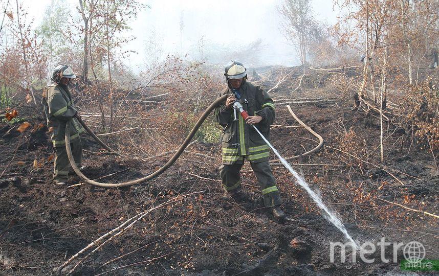 Площадь лесных пожаров в Сибири составляет 2,7 миллиона гектаров. Фото Василий Кузьмичёнок