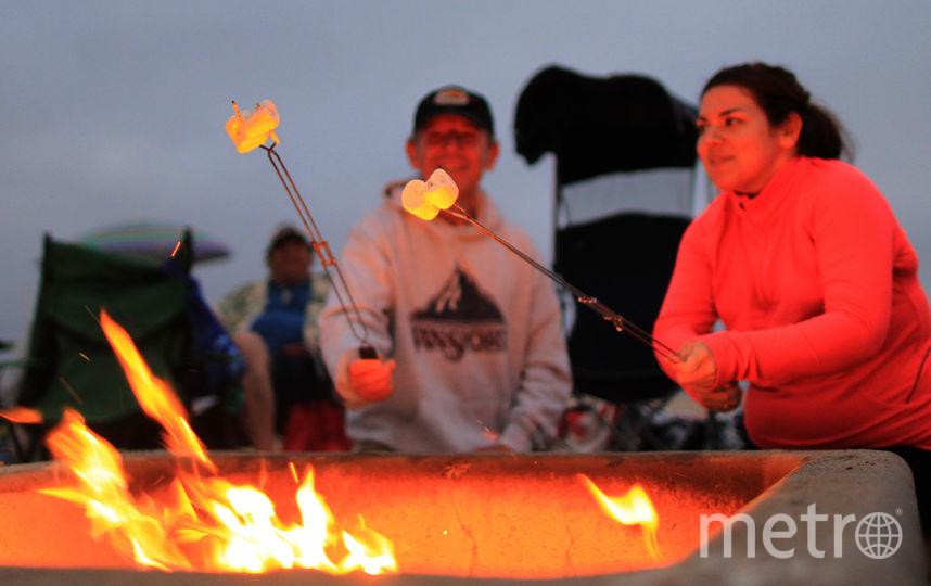 Пожарить зефирки на костре. Фото Getty