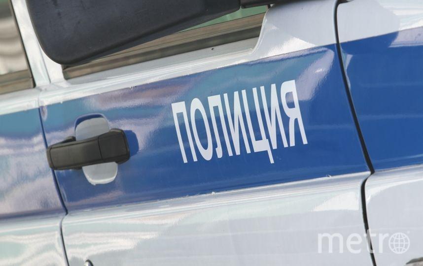 """Полицейские Росгвардии задержали хулиганку. Фото """"Metro"""""""