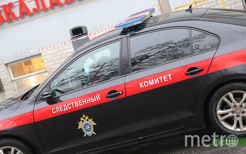 СК возбудил дело после гибели двух детей под колёсами электрички в Подмосковье. Фото Василий Кузьмичёнок