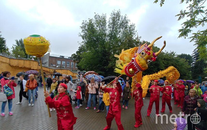 Началось всё действительно празднично: с выступления китайских барабанщиков возле главного входа в зоопарк и танца 10-метрового красного дракона, который парил над их головами. Фото Юлия Долгова.