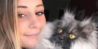 Злой кот завоевал любовь пользователей в Instagram
