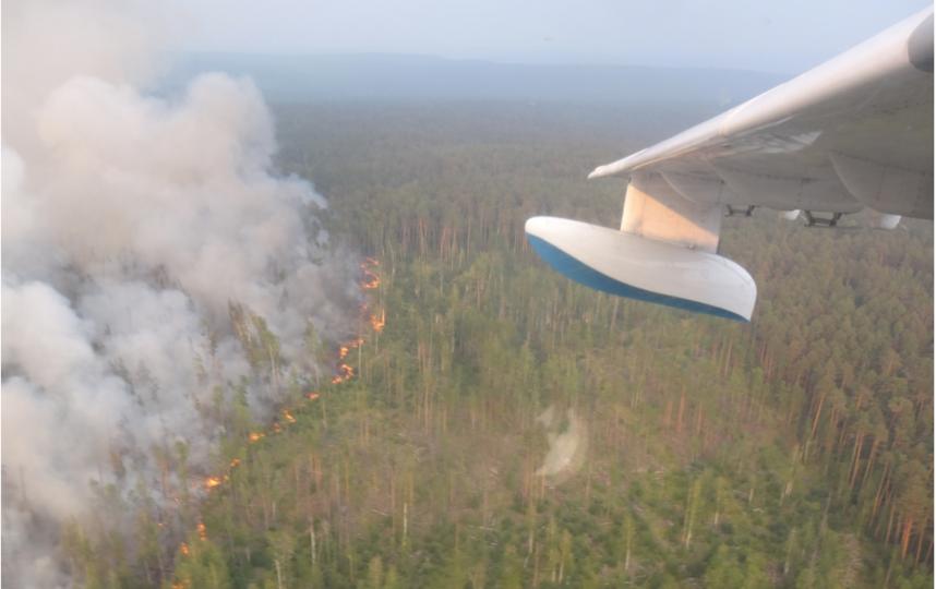 на территории РФ зафиксировано почти 470 возгораний в лесах общей площадью свыше 2,9 миллиона гектаров. Фото /twitter.com/MchsRussia