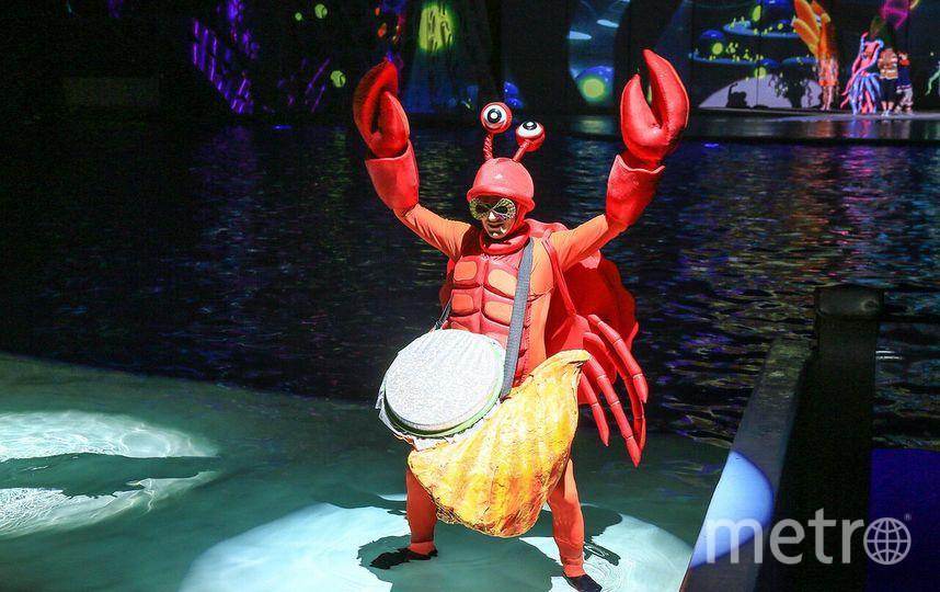 «Морской» карнавал пройдё на ВДНХ. Фото Предоставлено организаторами