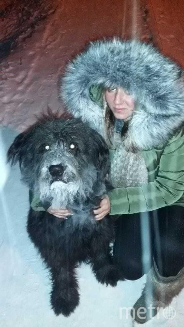 """Барошке 7 лет и он похож на чудовище, но на самом деле он лапулька и пускает слюни при виде котят. Фото Татьяна, """"Metro"""""""