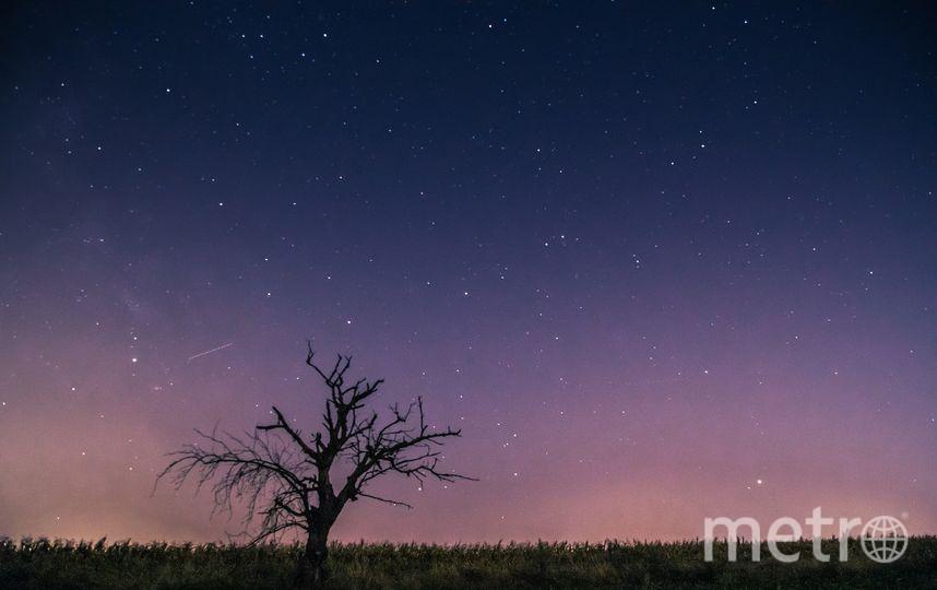 Когда наблюдать самый яркий звездопад года. Фото pixabay