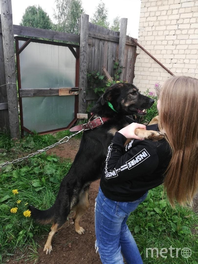Вика и собака из приюта Амур. Фото предоставила Виктория Яковлева