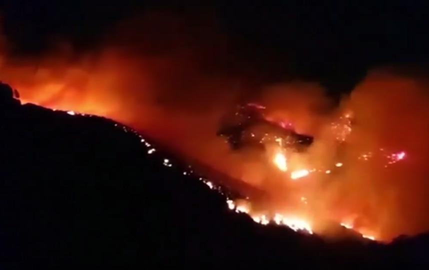 Около тысячи человек эвакуировано на Канарских островах из-за лесных пожаров. Фото Скриншот https://www.youtube.com/watch?v=KKmEw_38l5w, Скриншот Youtube