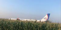 Airbus A-321 совершил аварийную посадку в кукурузном поле в Подмосковье: Подробности, фото и видео