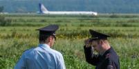 Заслуженный пилот России рассказал, как может навредить самолёту столкновение с птицами