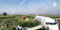 Более 70 человек обратились за медпомощью после аварийной посадки самолёта в Подмосковье