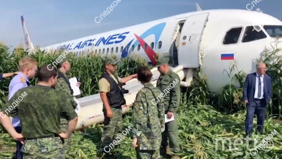 Судно совершило аварийную посадку в кукурузном поле в районе деревни Рыбаки Московской области. Фото РИА Новости