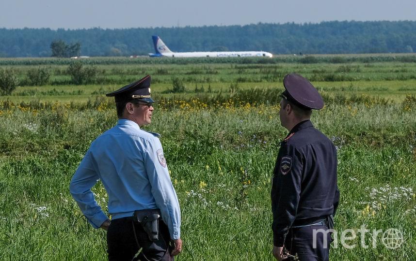 Воздушное судно совершило аварийную посадку в кукурузном поле. Фото AFP