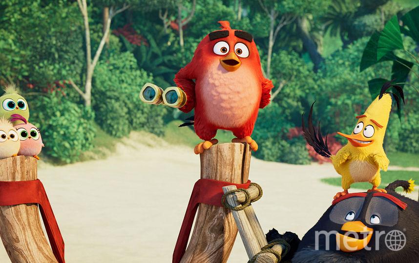 """Кадр из мультфильма """"Angry Birds 2 в кино"""". Фото WDSSPR"""