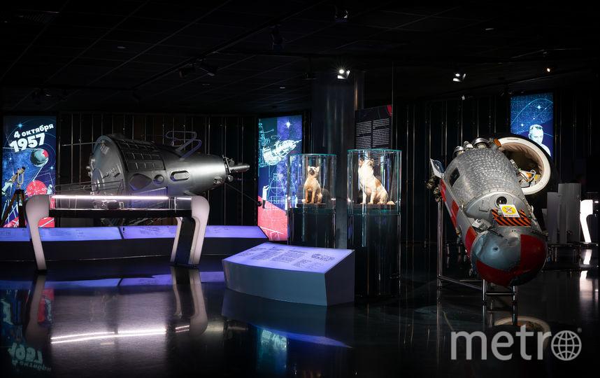 """Выставка """"Утро космической эры"""" уже идёт. Фото Предоставлено организаторами"""