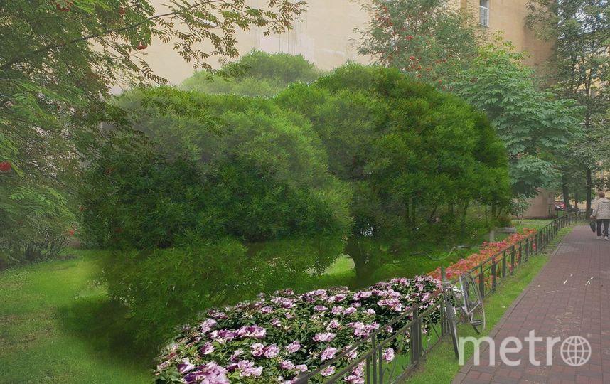 Петербуржцы высадят деревья на Васильевском острове. Фото spbtree, vk.com