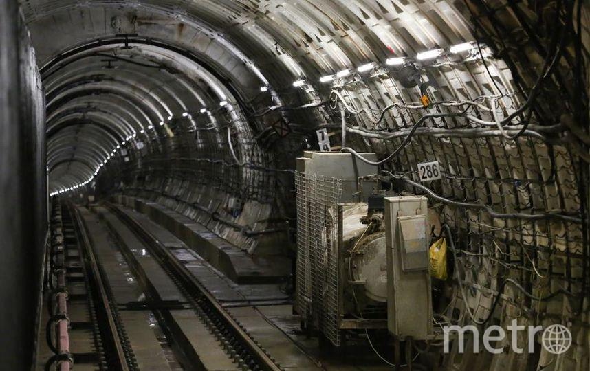 "16 августа. Фото gov.spb.ru, ""Metro"""