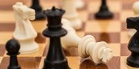 Шахматы не станут обязательным школьным предметом в российских школах