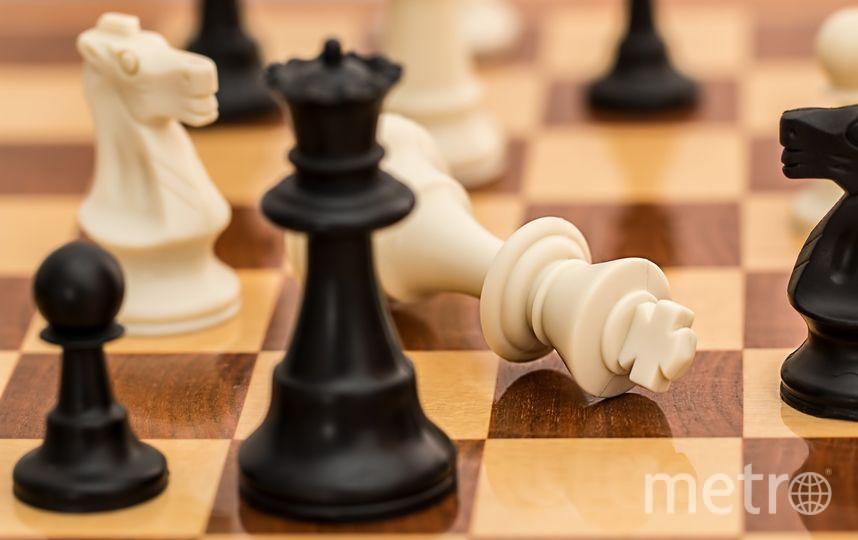 Образовательная организация самостоятельно принимает решение о проведении уроков шахмат. Фото pixabay.com
