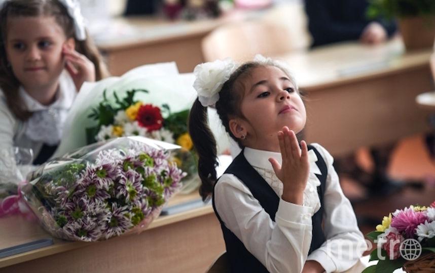 Ученики и учителя высказались по поводу запрета гаджетов. Фото РИА Новости