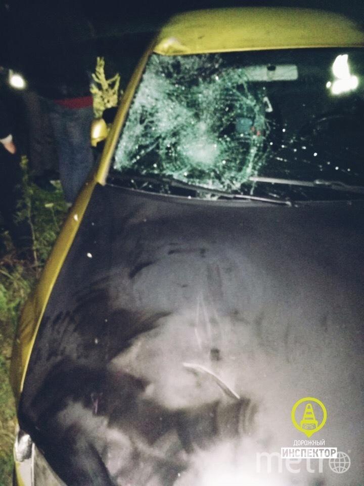 В Ленобласти поймали водителя, сбившего насмерть подростка. Фото dorinspb, vk.com