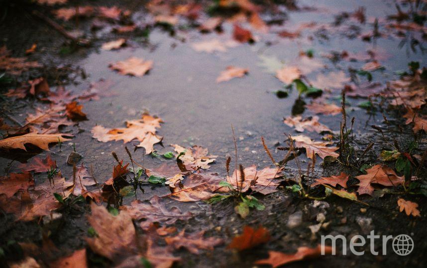 Регион накроют затяжные дожди. Фото Nick Cooper
