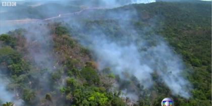 Лесные пожары в Бразилии достигли рекордных масштабов