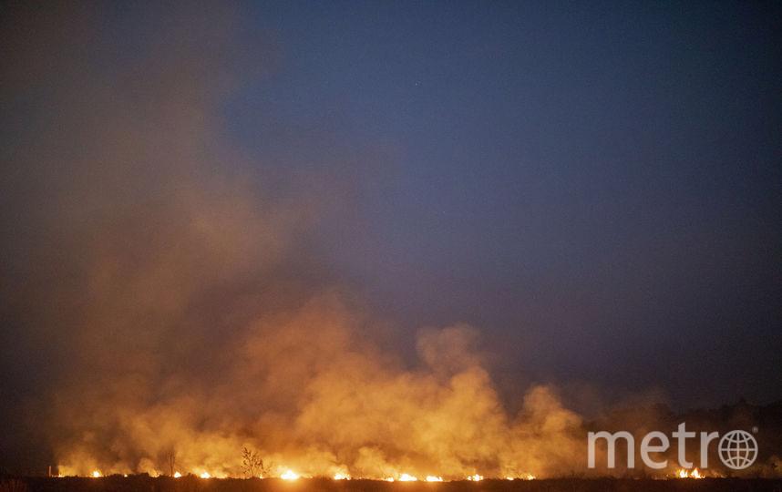 Лесные пожары в Бразилии достигли рекордных масштабов. Фото AFP