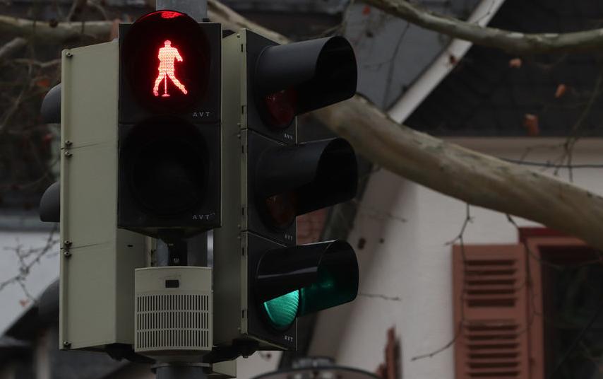 В немецком городе Фридберг появились светофоры с королём рок-н-ролла. Фото AFP