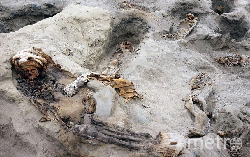 В Перу археологи обнаружили крупнейшее захоронение детей, принесённых в жертву. Фото AFP