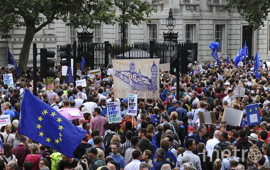 Менее чем за сутки в Великобритании петиция против приостановки работы парламента набрала 1,3 млн подписей. Фото AFP