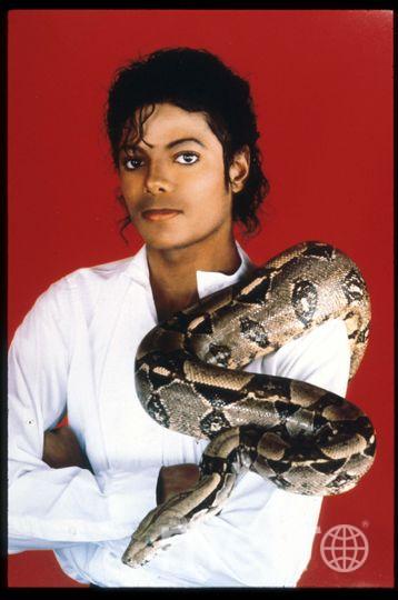 Майкл Джексон позирует со своим любимым удавом 15 сентября 1987 года в США. Фото Getty