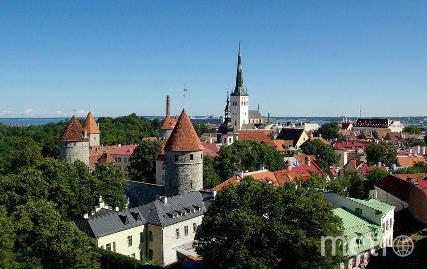 Эстония. Фото Pixabay