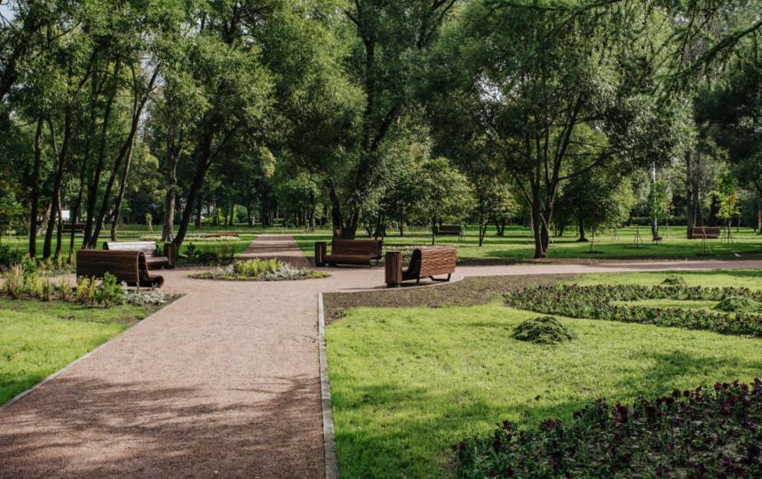 "Пионерский сад. Фото gov.spb.ru/gov/otrasl/blago, ""Metro"""