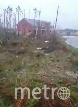 В результате удара стихии многие дома оказались подтоплены, деревья вырваны с корнем. Фото AFP