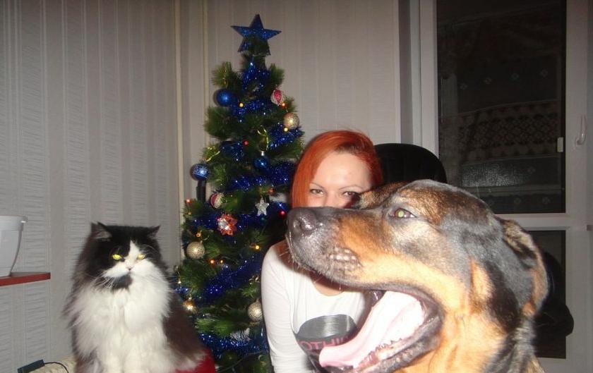 """Крис несмотря на свой внешний грозный вид очень добрый и хорошо ладит людьми, и даже (!) с котом. Фото Татьяна, """"Metro"""""""